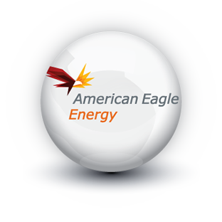 Ball Bearing American Eagle Energy